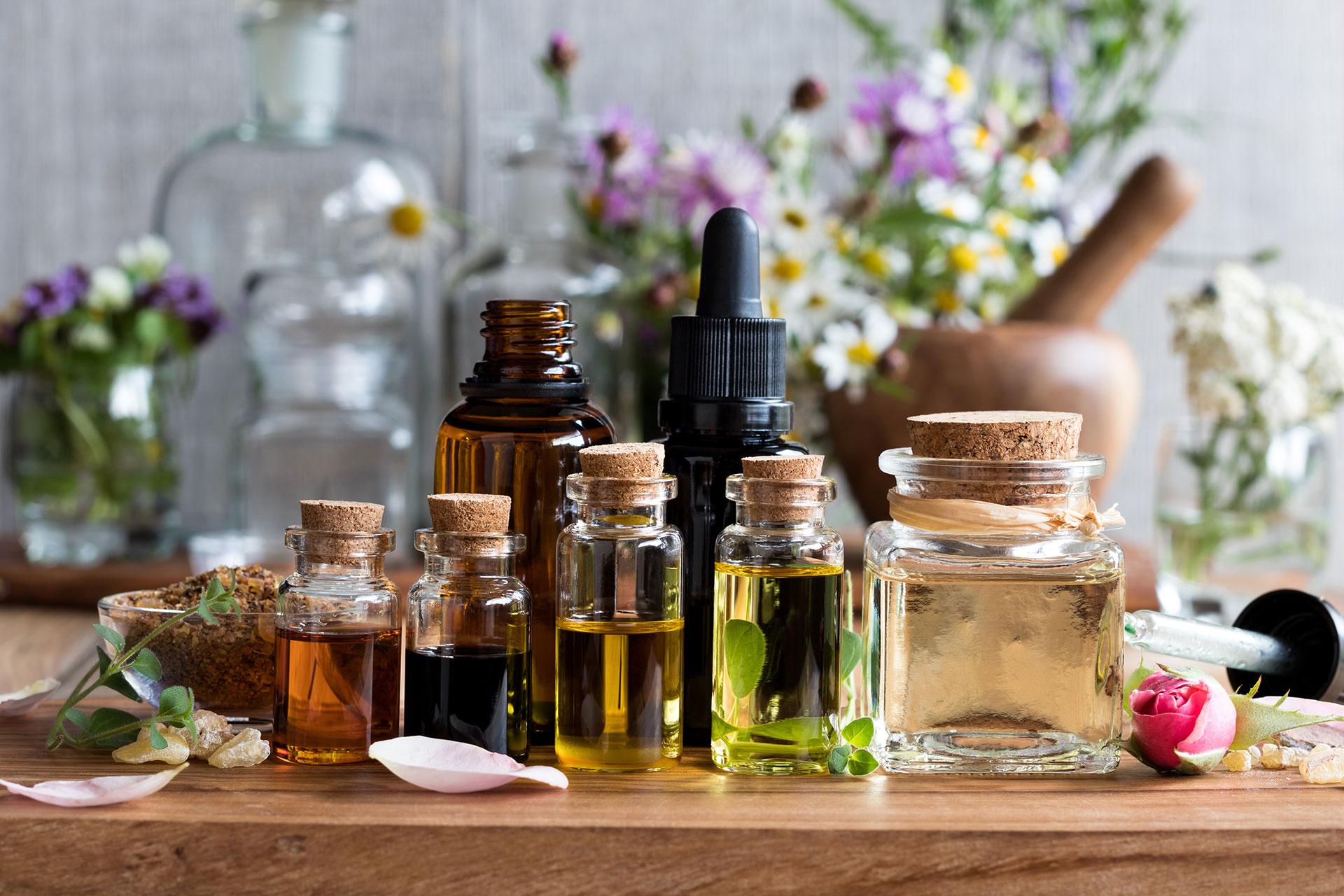 campania aromateria